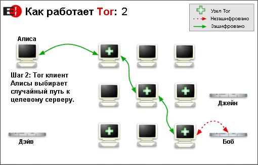 tor_2