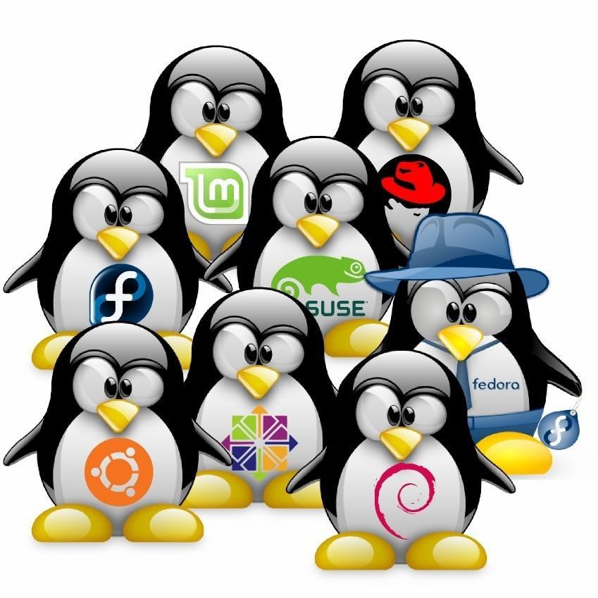 Определить дату последнего входа в систему Linux