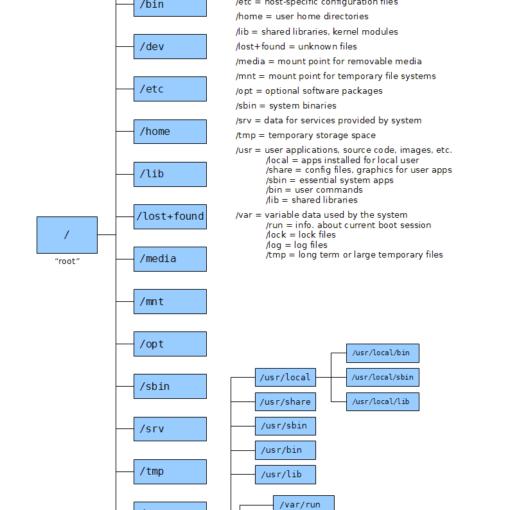 Структура папок в Linux